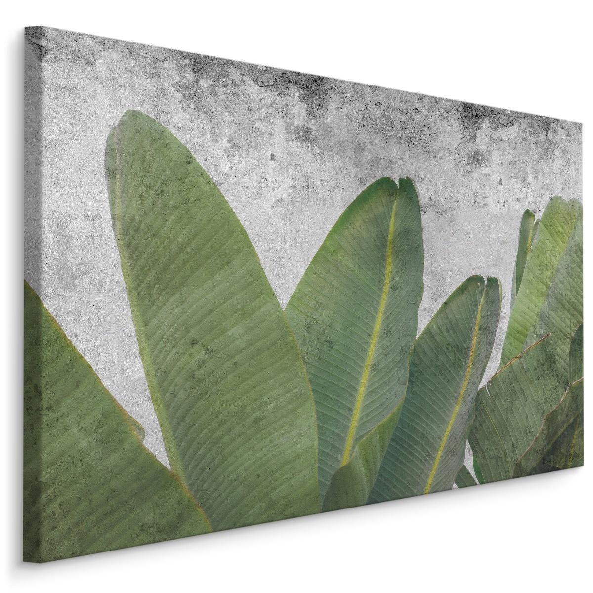 Schilderij - Tropische bladeren op betonnen achtergrond, groen/grijs, 4 maten, premium print