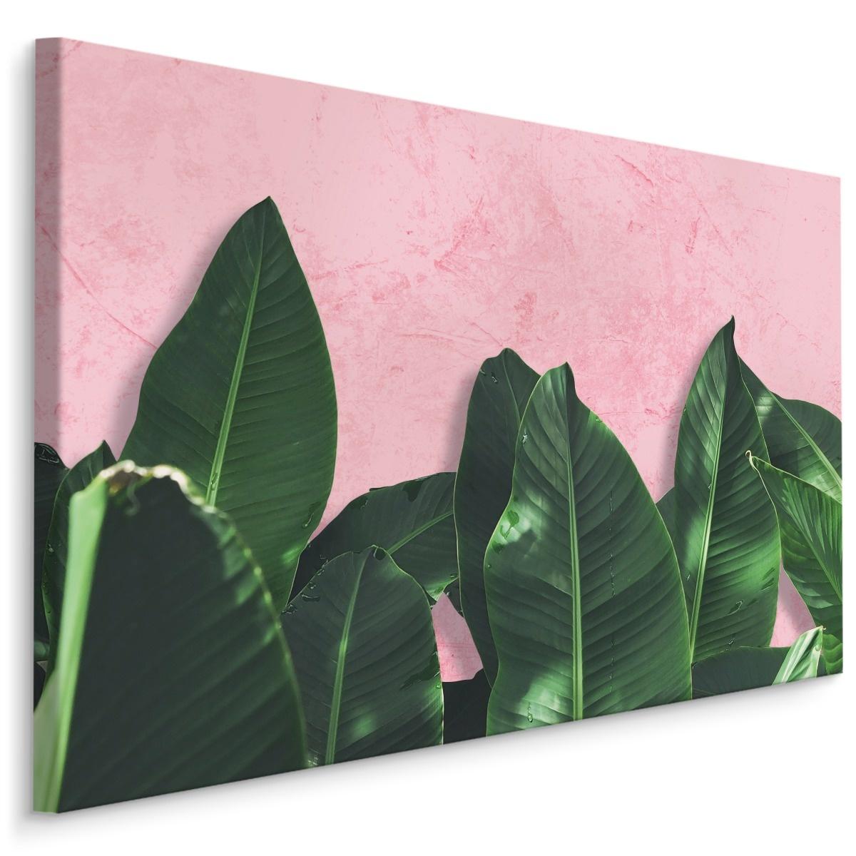 Schilderij - Bananenblad op roze achtergrond, 4 maten, premium print