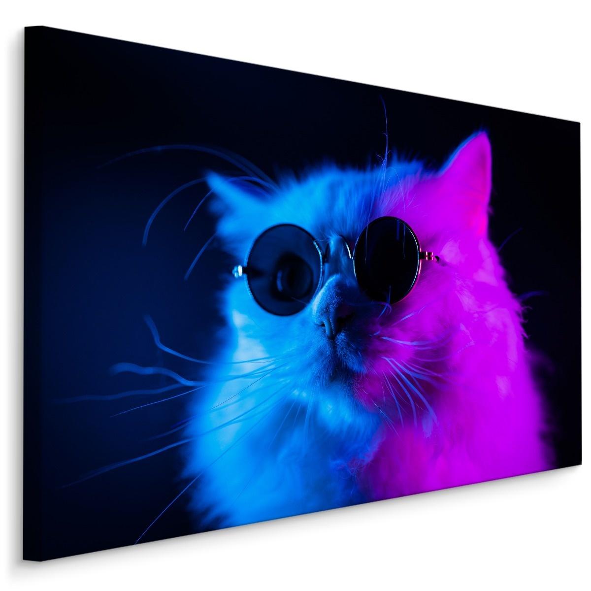 Schilderij - Cool Cat, paars/blauw, 4 maten, premium print