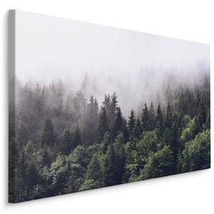 Schilderij - Mistig in de bergen, groen/grijs, 4 maten, premium print