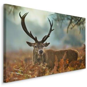 Schilderij - Wonderbaarlijk hert, 4 maten, multi-gekleurd, wanddecoratie