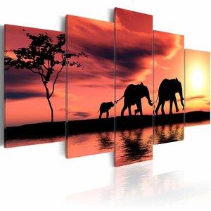 Schilderij - Olifanten in Afrika, oranje/geel, 5luik, wanddecoratie , 200x100cm