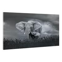 Karo-art Schilderij - Moeder en baby olifant, Zwart-Wit,  2 maten, Premium print
