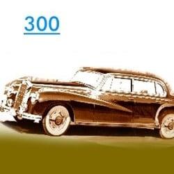 300 Mo