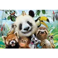 Prime3D 3D Puzzel - Zoo Selfie, 63 stuks