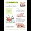 Deltas Stickers plakken, kleuren en lezen - dieren op de boerderij