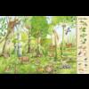 Deltas Kijk en Zoekboek - in het bos