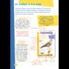 Deltas Vogels herkennen en observeren