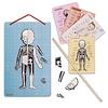 Janod Spel/Puzzel - het menselijk lichaam
