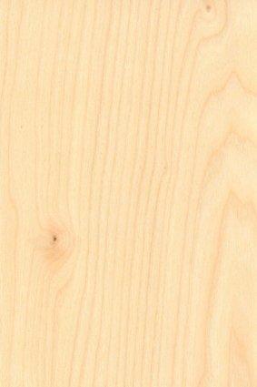 Wall Dragon - Birch