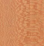Wall Dragon Sunburst - Lacewood