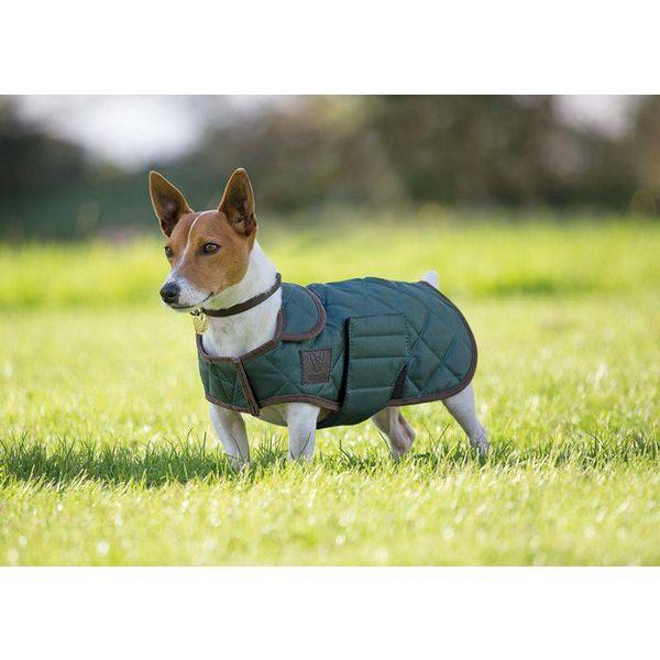 Gevoerde hondenjas Digby & Fox