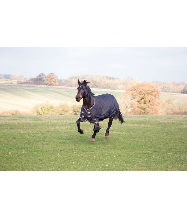 Shires Tempus Plus 300