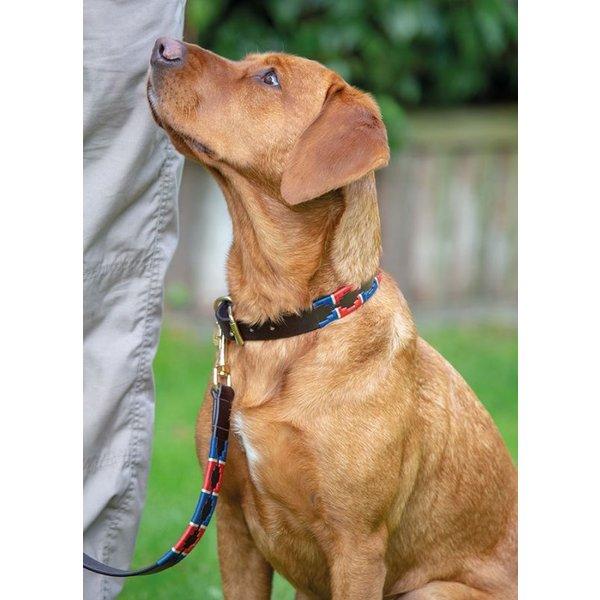 Drover Polo Honden Halsband