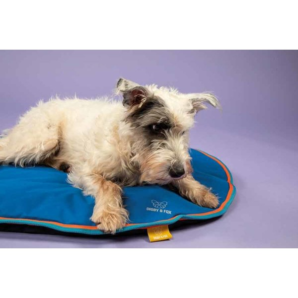 Waterproof Dog Cushion