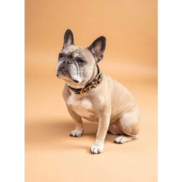 Digby&Fox koeienhaar hondenhalsband