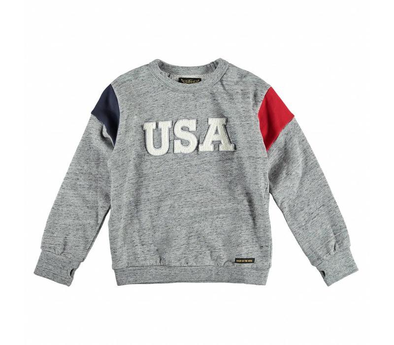 BRIAN Heather Grey USA - Boy Knitted Crew Neck Sweatshirt