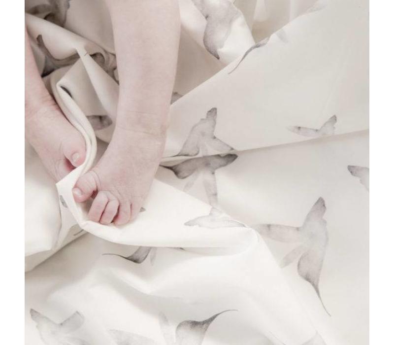Baby soft teddy blanket little dreams offwhite