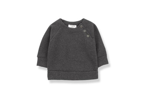 1 + More in the Family Mandy Sweatshirt, Anthracite