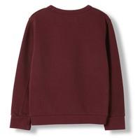 Brian Burgundy - Boy Knitted Crew Neck Sweatshirt