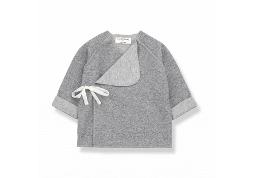 1 + More in the Family NAT newborn shirt grey