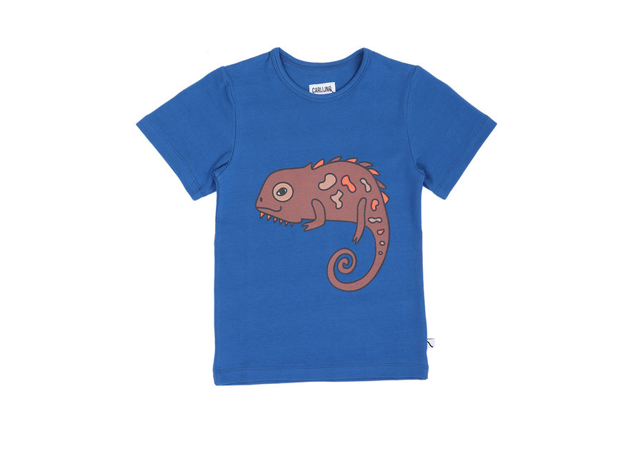Chameleon boy - t-shirt + print