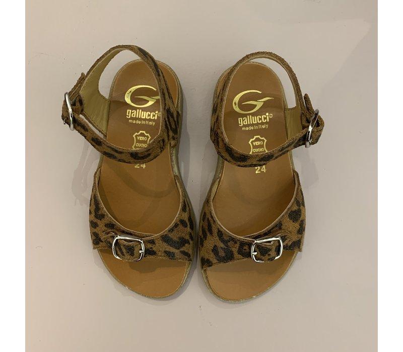 Leopard sandalen met verstelbare gespen