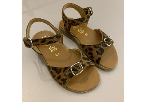 Gallucci Leopard sandals with addustable buckle