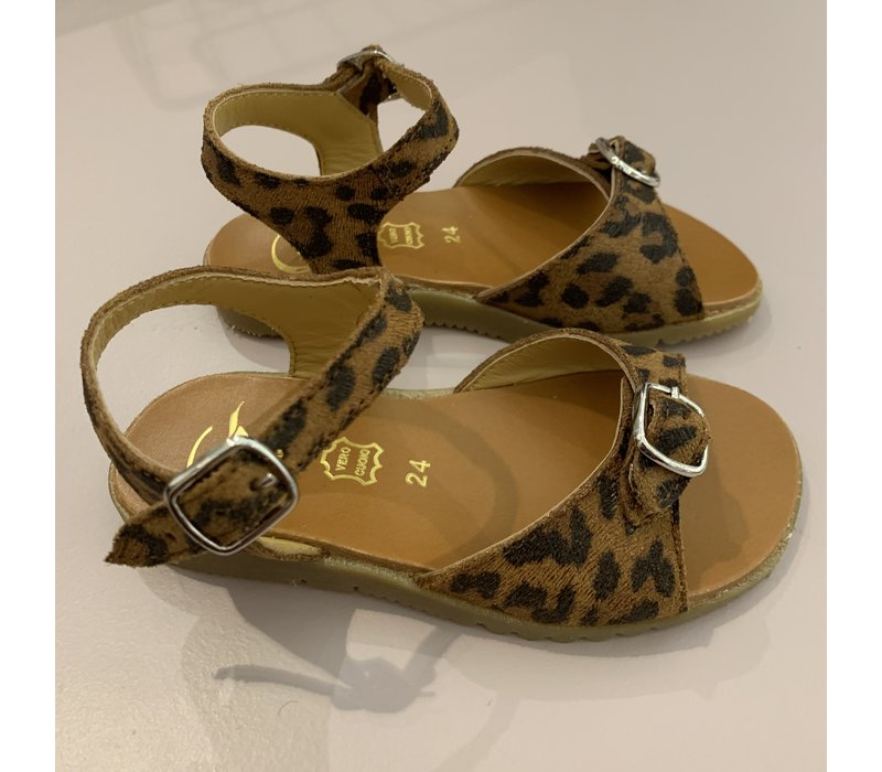 Leopard sandals with addustable buckle