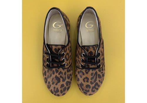 Gallucci Lage veterschoenen met leopard print, ook voor de mama's