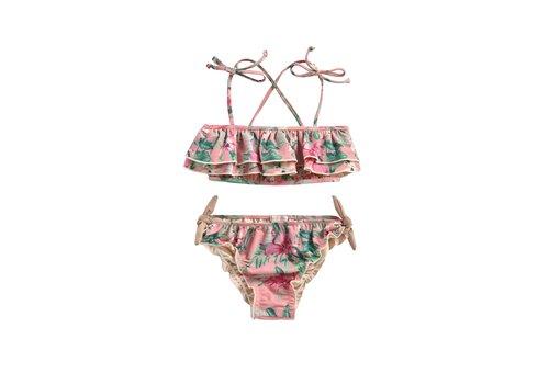 Louise Misha Bikini Zacata Sienna Flamingo