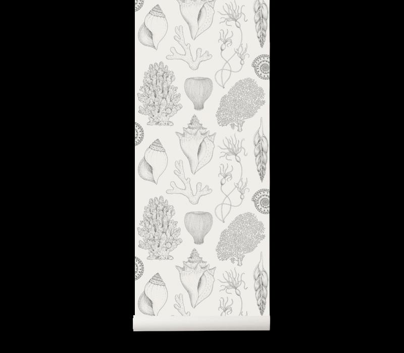 Katie Scott Wallpaper - Shells Off-White
