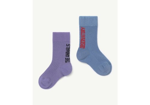 The Animals Observatory Worm Baby Socks Purple