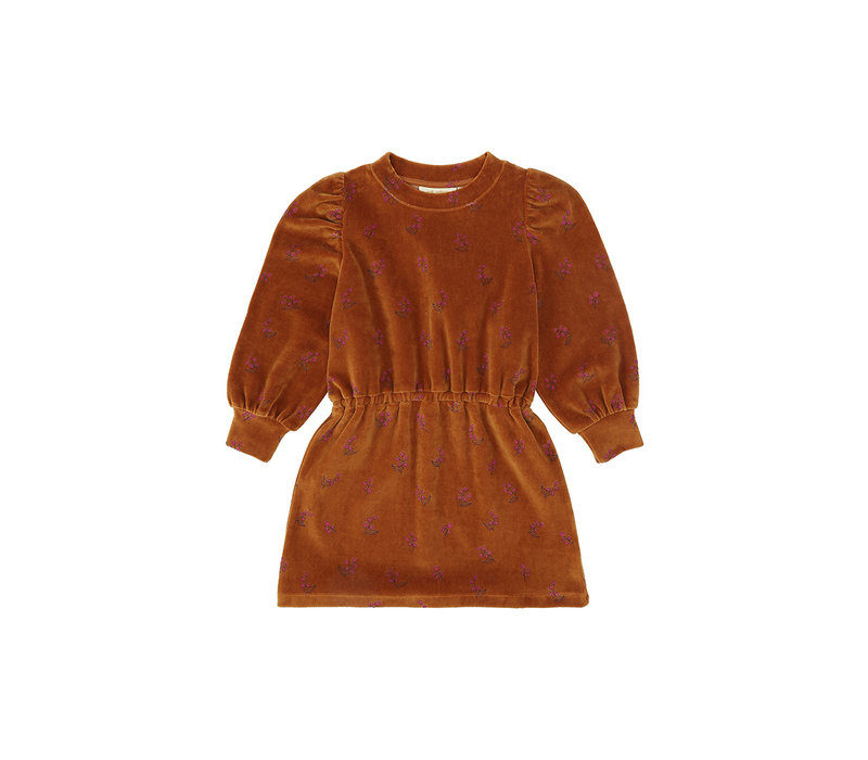Gina Dress Thai Curry, AOP Rosehibs