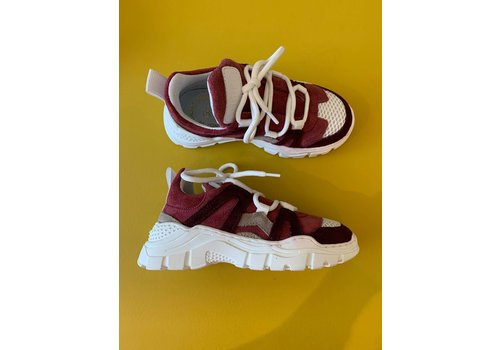 Gallucci Sneakers with bordeaux/pink details, up to mommy size