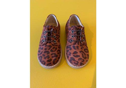 Gallucci Lace-up leopard shoes