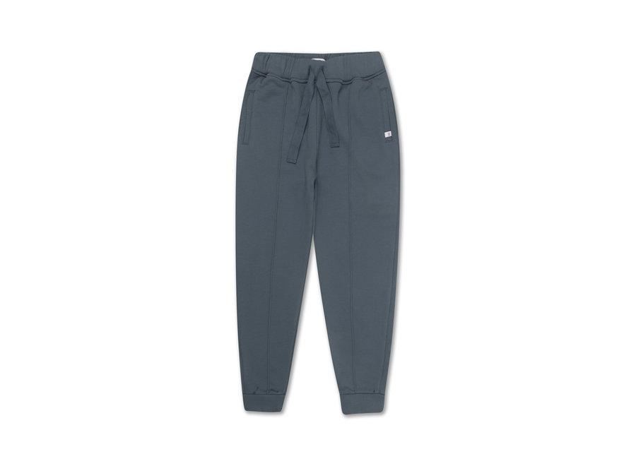 Jogger Greyish Blue
