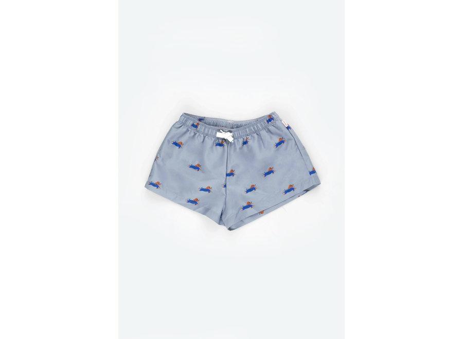 Doggy Paddle Trunks summer grey/iris blue