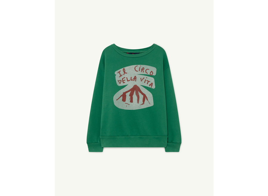 Bear Kids+ Sweatshirt Green Circo