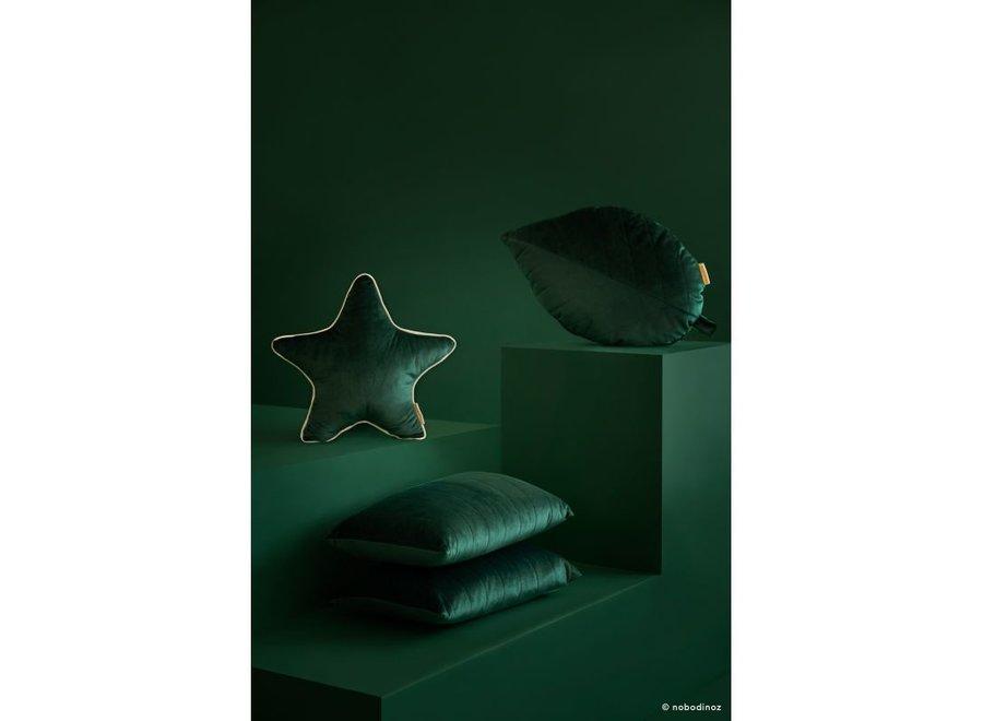 Starlight Metal Luminous Star