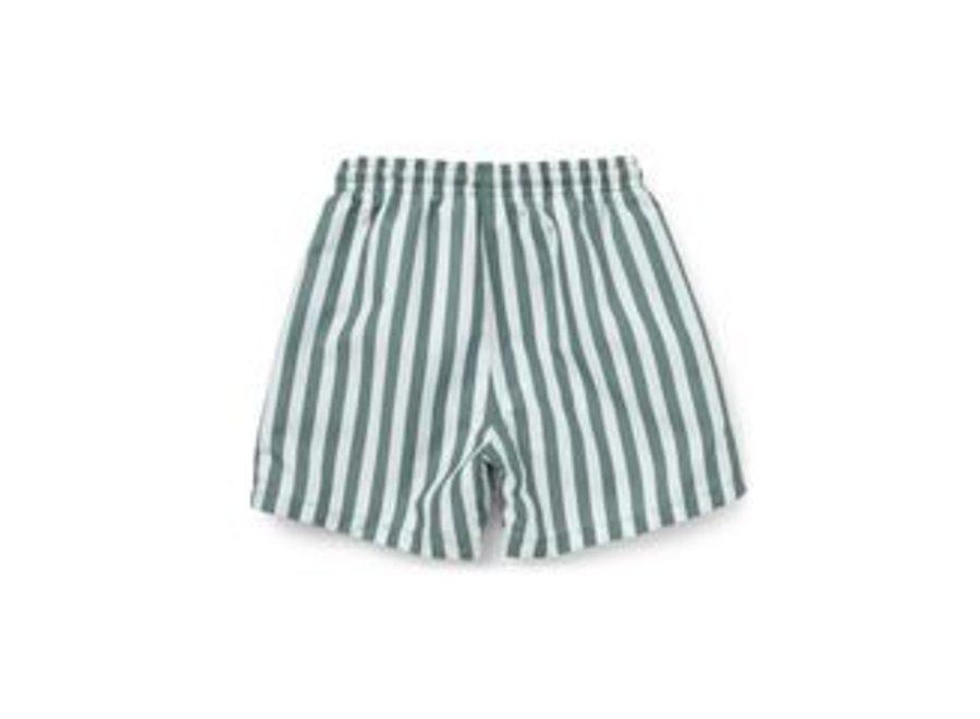 Duke board shorts - Stripe: Peppermint/white