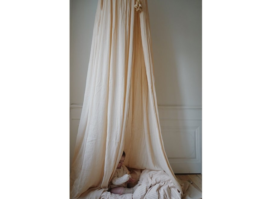 BED CANOPY - CHAMPAGNE