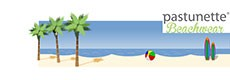 Pastunette & Rebelle Beachwear