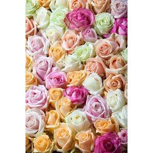 Rozen.nl Gemischte rosen strauss