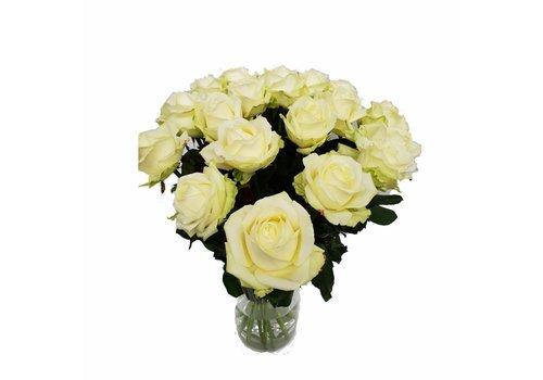 Rozen.nl Avalanche+ - White roses - 60 pieces
