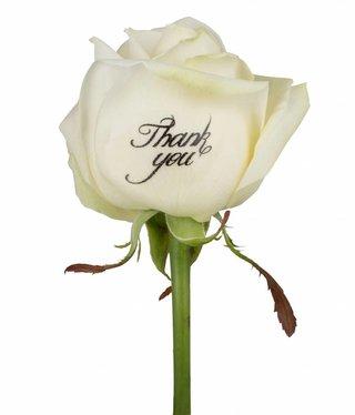 Bedrukte witte rozen