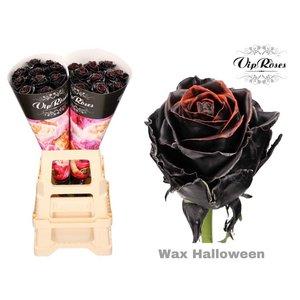Rozen.nl Halloween Wax