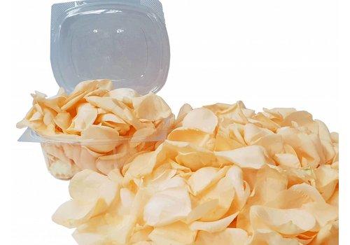 Rozen.nl Rozenblaadjes Peach