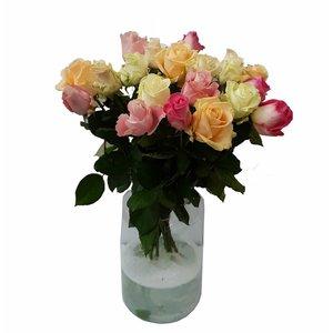 Rozen.nl Gemengde rozen pastelkleur 20 per bos (altijd 5 kleuren)