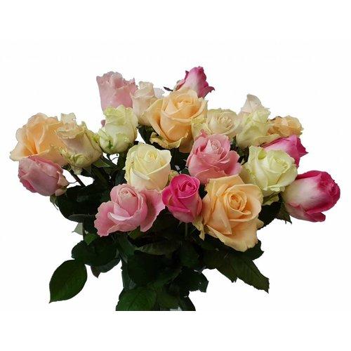 Rozen.nl Gemengde rozen pastelkleur 20x